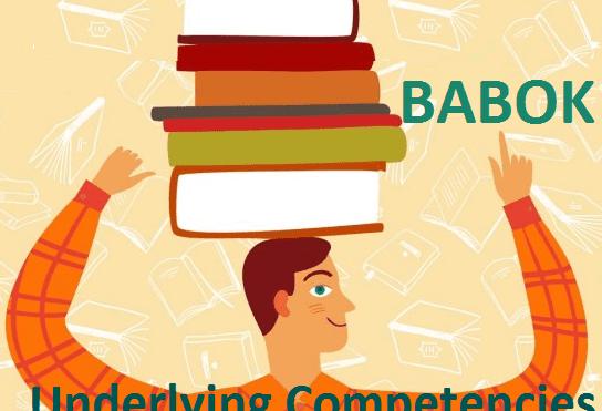 Что должен знать и уметь бизнес-аналитик по BABOK: 6 базовых компетенций